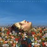 Album review: THE PINEAPPLE THIEF – Magnolia