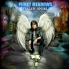 Album review: PUNKY MEADOWS – Fallen Angel