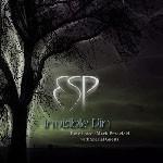 Album review: ESP – Invisible Din (Tony Lowe, Mark Brzezicki)