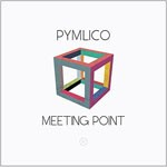 Album review: PYMLICO – Meeting Point