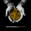 Album review: DOYLE BRAMHALL II – Rich Man
