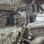 Album review: THE SHARPEEZ – Wild One