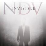Album review: NICK D'VIRGILIO – Invisible