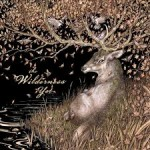 Album review: THE WILDERNESS YET