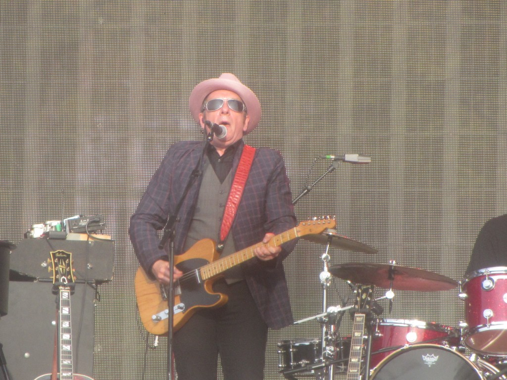 Year Of Elvis Costello Hit Red Shoes