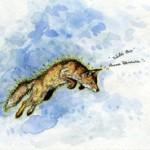AWNA TEIXEIRA - Wild One