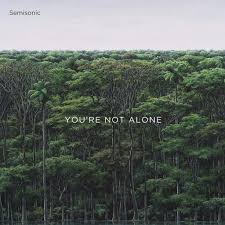 SEMISONIC – You're Not Alone