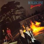 wildlife burning