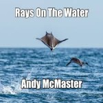 ANDY McMASTER - Rays On The Water